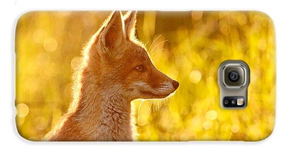 Fox Galaxy S6 Case - Le P'tit Renard by Roeselien Raimond