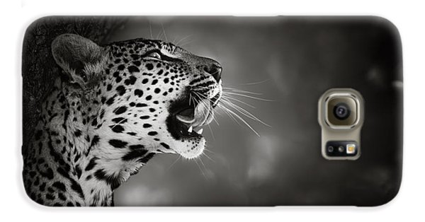 Leopard Portrait Galaxy S6 Case by Johan Swanepoel