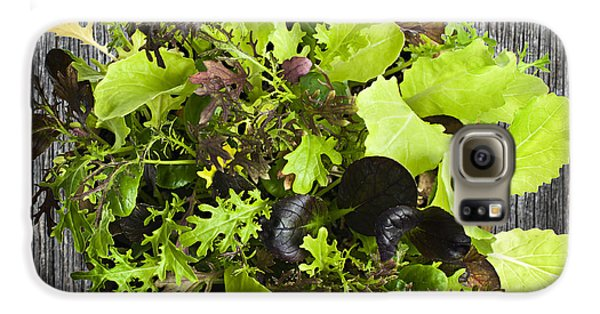 Lettuce Seedlings Galaxy S6 Case by Elena Elisseeva