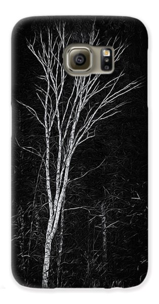 Life's A Birch No.2 Galaxy S6 Case by Mark Myhaver