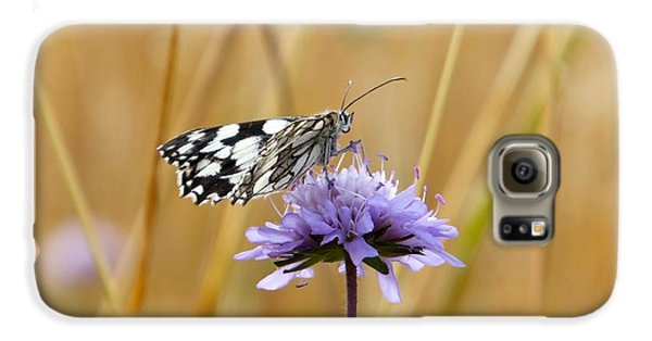 Light Butterfly Galaxy S6 Case by Marc Philippe Joly