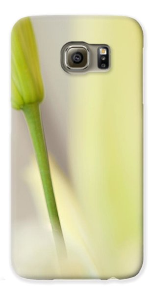 Lily Delight. Floral Abstract Galaxy S6 Case by Jenny Rainbow