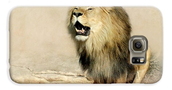 Lion Galaxy S6 Case by Heike Hultsch