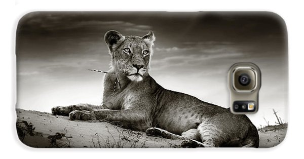 Lioness On Desert Dune Galaxy S6 Case