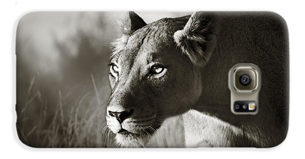 Lioness Stalking Galaxy S6 Case by Johan Swanepoel