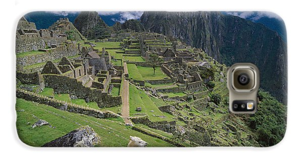 Llama At Machu Picchus Ancient Ruins Galaxy S6 Case by Chris Caldicott