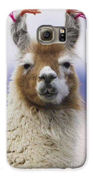 Llama Galaxy S6 Case - Llama In Bolivia by Art Wolfe MINT
