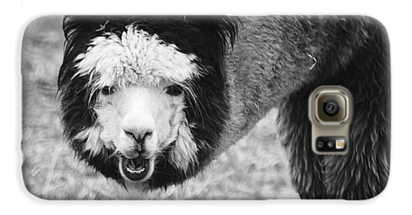 Galaxy S6 Case featuring the photograph Llama by Yulia Kazansky