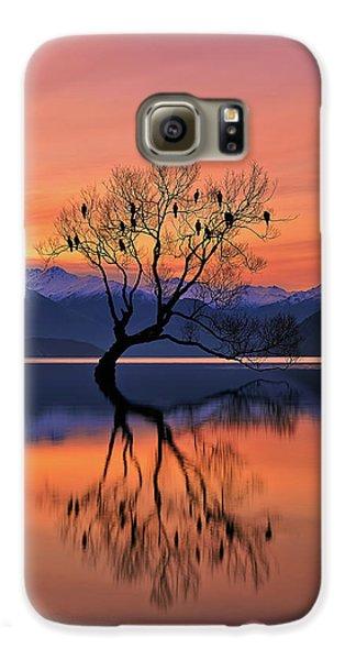 Colours Galaxy S6 Case - Lone Tree Is Not Lonely by Mei Xu