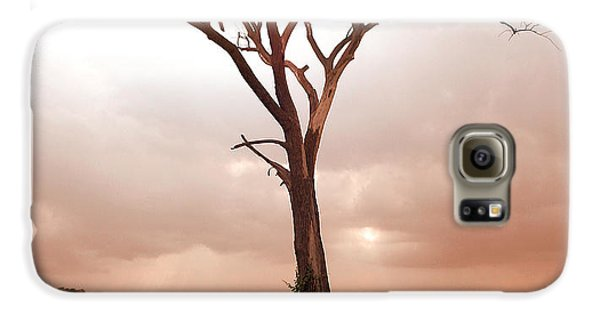 Galaxy S6 Case featuring the photograph Lonely Tree by Ricky L Jones