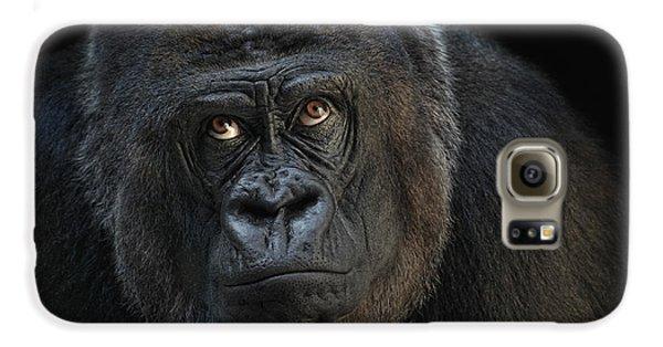 Gorilla Galaxy S6 Case - Looking Up by Joachim G Pinkawa