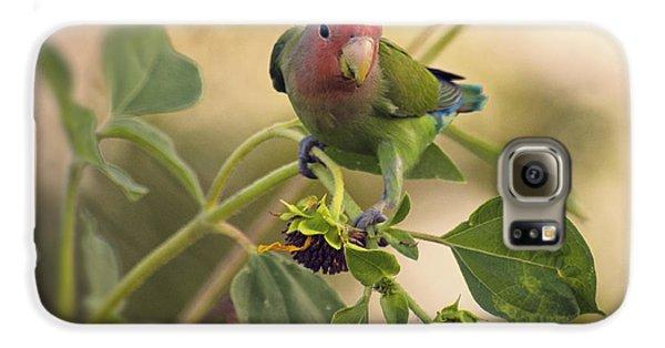Lovebird On  Sunflower Branch  Galaxy S6 Case by Saija  Lehtonen