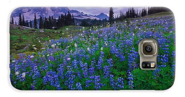 Lupines Dawn Galaxy S6 Case