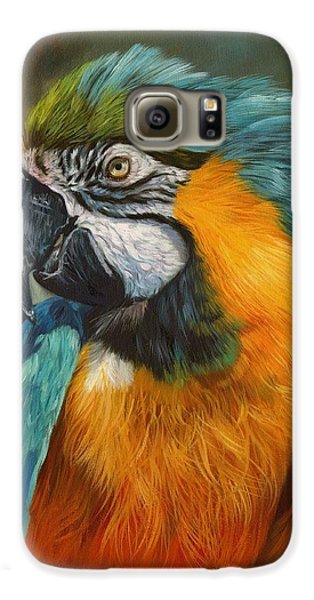 Macaw Galaxy S6 Case - Macaw Parrot by David Stribbling