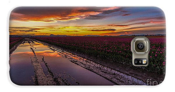 Magenta Fields Tulips Galaxy S6 Case by Mike Reid
