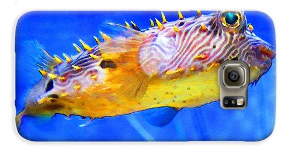 Magic Puffer - Fish Art By Sharon Cummings Galaxy S6 Case