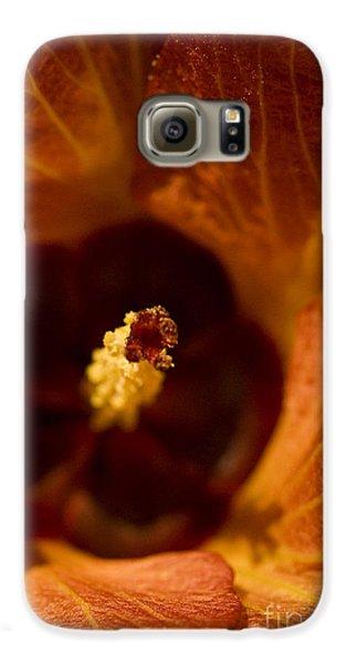 Maldivian Flower Galaxy S6 Case