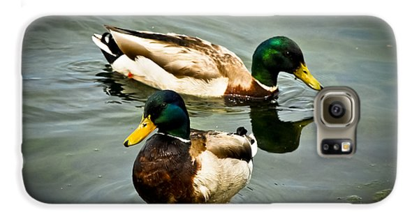 Mallards On Mendota Galaxy S6 Case