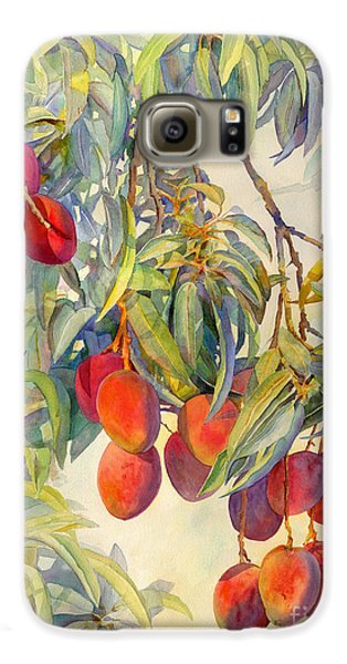 Mangoes In The Evening Light Galaxy S6 Case by Dorothy Boyer