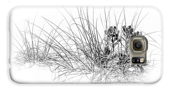 Mangrove Galaxy S6 Case - Mangrove And Sea Oats-bw by Marvin Spates