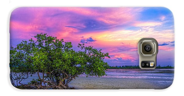 Mangrove Galaxy S6 Case - Mangrove By The Bay by Marvin Spates