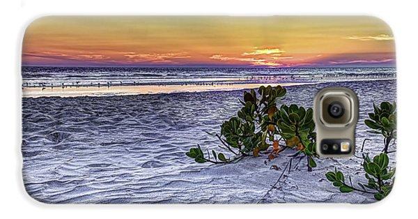 Mangrove Galaxy S6 Case - Mangrove On The Beach by Marvin Spates