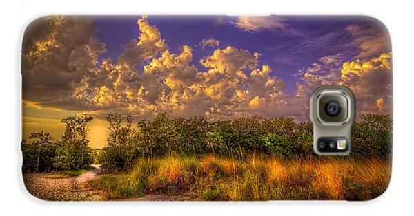 Mangrove Galaxy S6 Case - Mangrove Path by Marvin Spates