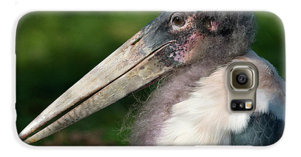 Marabou Stork Galaxy S6 Case by Nigel Downer