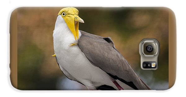 Masked Lapwing Galaxy S6 Case by Carolyn Marshall