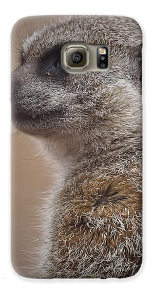 Meerkat 9 Galaxy S6 Case by Ernie Echols