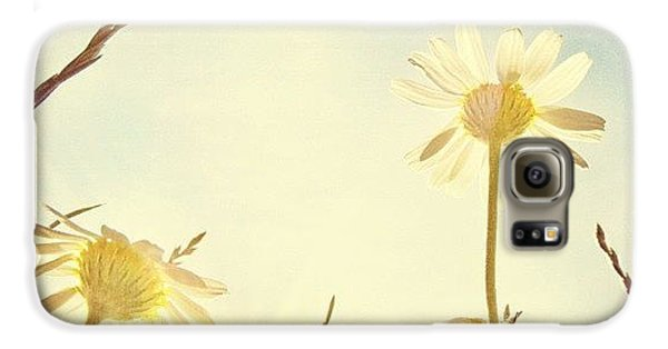 Sunny Galaxy S6 Case - #mgmarts #daisy #all_shots #dreamy by Marianna Mills