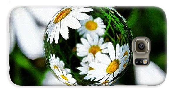 Summer Galaxy S6 Case - #mgmarts #daisy #flower #weed #summer by Marianna Mills
