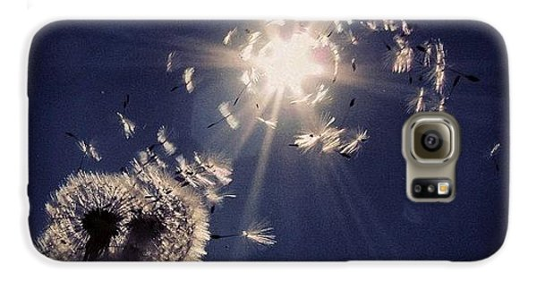Blue Galaxy S6 Case - #mgmarts #dandelion #wish #makeawish by Marianna Mills