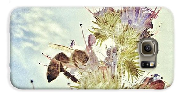 Summer Galaxy S6 Case - #mgmarts #flower #spring #summer #bee by Marianna Mills