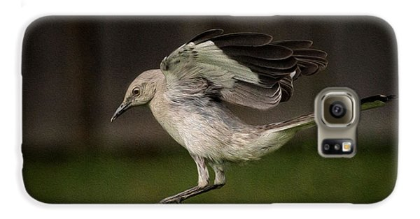 Mockingbird No. 2 Galaxy S6 Case by Rick Barnard