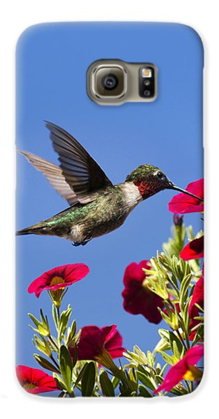 Moments Of Joy Galaxy S6 Case by Christina Rollo
