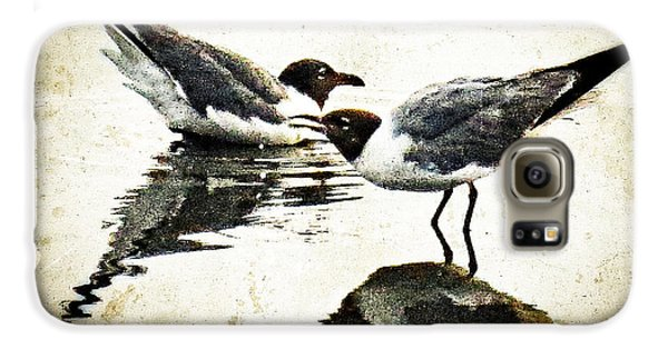 Morning Gulls - Seagull Art By Sharon Cummings Galaxy S6 Case by Sharon Cummings