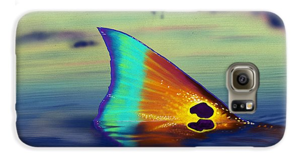 Drum Galaxy S6 Case - Morning Stroll by Kevin Putman