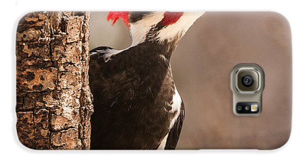 Mr. Pileated Galaxy S6 Case