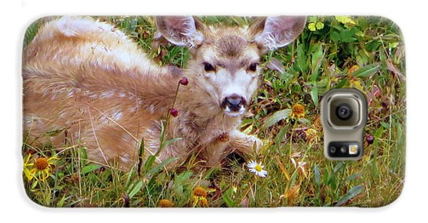 Galaxy S6 Case featuring the photograph Mule Deer Fawn by Karen Shackles