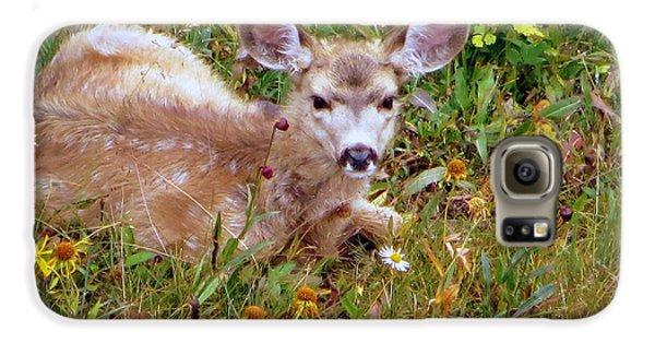 Mule Deer Fawn Galaxy S6 Case