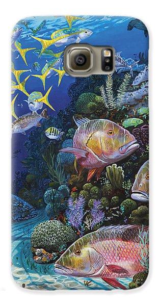 Mangrove Galaxy S6 Case - Mutton Reef Re002 by Carey Chen