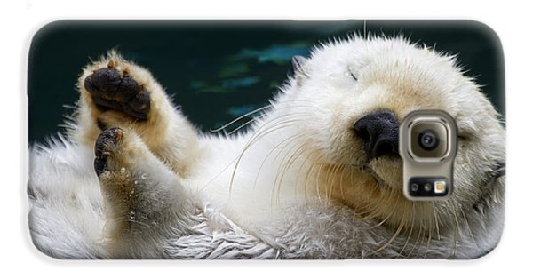 Otter Galaxy S6 Case - Napping On The Water by Mike  Dawson
