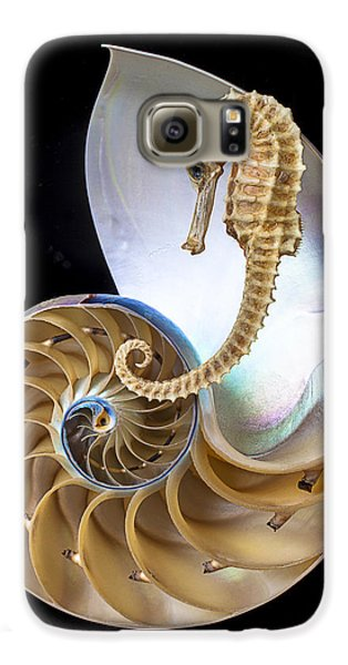 Nautilus With Seahorse Galaxy S6 Case by Garry Gay