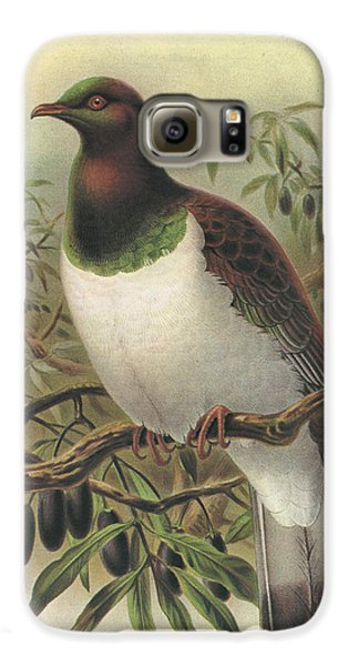 New Zealand Pigeon Galaxy S6 Case by Rob Dreyer