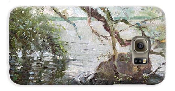 Seagull Galaxy S6 Case - Niagara River Side by Ylli Haruni