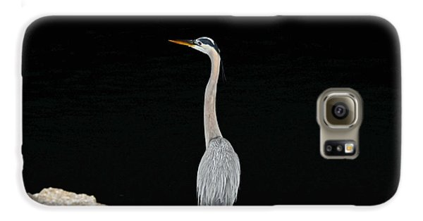 Galaxy S6 Case featuring the photograph Night Of The Blue Heron 2 by Anthony Baatz