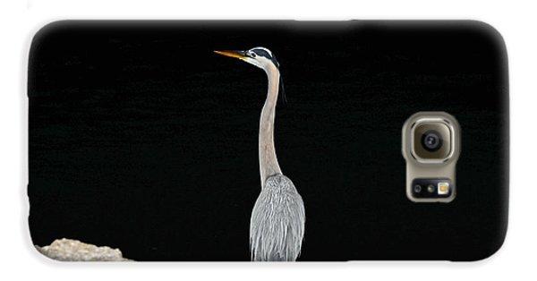 Night Of The Blue Heron 2 Galaxy S6 Case