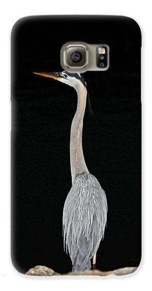 Night Of The Blue Heron 3 Galaxy S6 Case