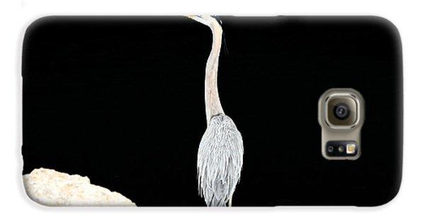 Night Of The Blue Heron  Galaxy S6 Case